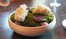 الطحالب البحرية والحشرات غذاء العالم الجديد!