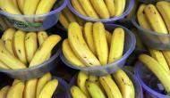237 كيلوغراما من الكوكايين في صناديق الموز في البرتغال