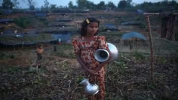 البيئة في حالة متدهورة بسبب تناقص المياه العذبة الجوفية