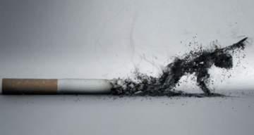 النمسا تصدر قرارا يفاجئ المدخنين
