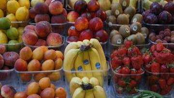 تعرّف على الأغذية التي تحمي من آلام الركبة