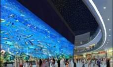 """انقطاع الكهرباء في """"دبي مول"""" والجهات المختصة تعمل على إعادتها"""