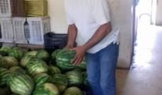 مزارعو البطيخ في صور رموا محاصيلهم احتجاجا على المضاربة