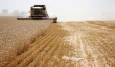 روسيا: أسعار القمح متباينة بفعل مخاوف الجودة والمنافسة على إمدادت مصر