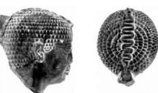 شي غريب: الفرعون الغامض في حاصور