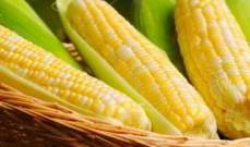 ارتفاع العقود الآجلة لأسعار الذرة بنسبة 1.36% إلى 3.5300 دولار للبوشل