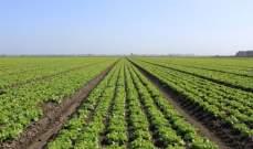 دراسة: البلدان الأكثر فقراً تواجه صعوبات أكبر في الإنتاج الزراعي