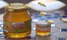المغرب يطلب استيراد العسل والمربى من مصر