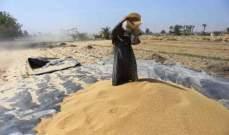 الجزائر: طرح مناقصة جديدة لشراء قمح الطحين