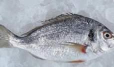 النرويج تخسر مليار دولار في ظل الحظر الروسي لصادرات السمك