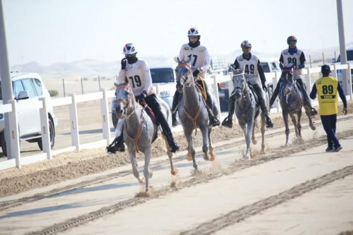 """حاكم دبي يرعى سباقات """"تحدّي الوثبة"""" للخيول العربية الأصيلة"""